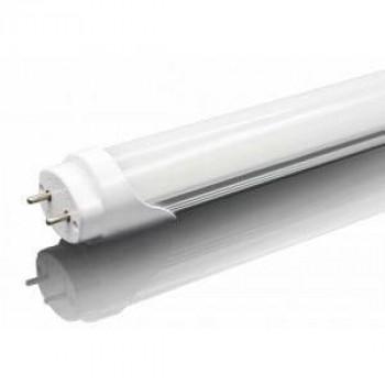 60 cm LED TL 10W T8 koud-wit 840